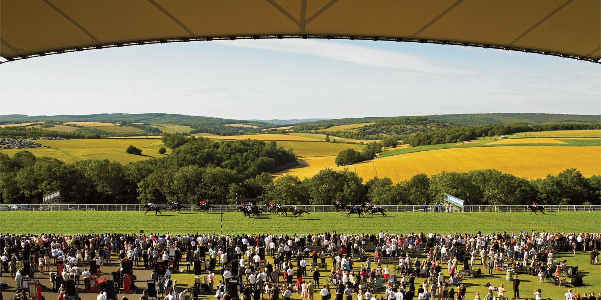Hire Private Box, Sussex Stand, Horse Racing, The Goodwood Estate, Prestigious Venues