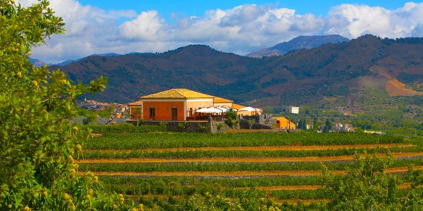 Wine Tasting Venue, Private Wine Tasting Event Venue, Hotel Villa Diodoro, Prestigious Venues