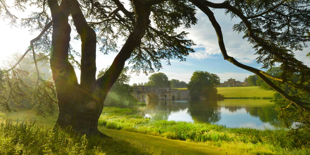Bridge Lake, Blenheim Palace, Prestigious Venues
