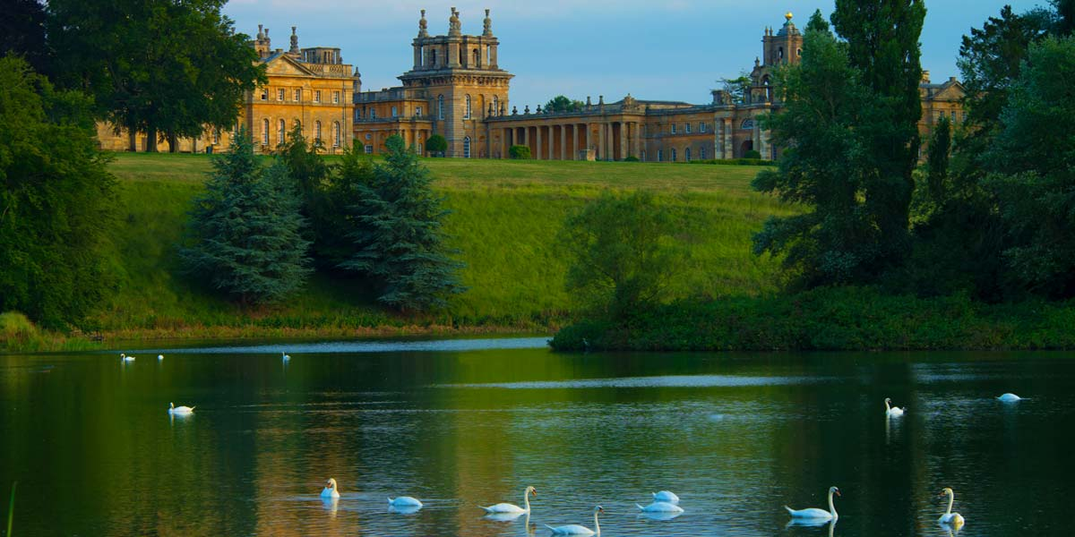 Lake and Swans View, Blenheim Palace, Prestigious Venues