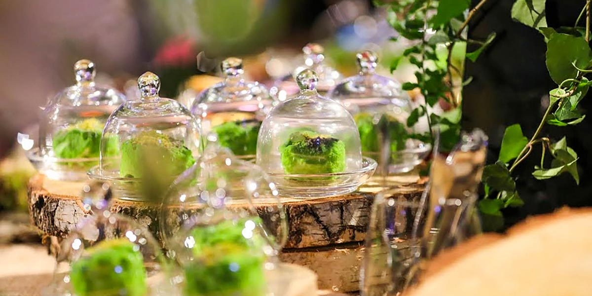 Event Caterer In the UK, Food Show, Prestigious Venues